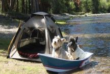 Pet Friendly Campgrounds in U.S. / Campgrounds in the United States that allow your pets. If you know of a Pet Friendly Campground that is not listed, please fill out the Resources form on our website or email us so we can add them.