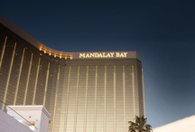 Mandalay Bay / Where else can you explore eleven acres of beachfront bliss, visit a predator-based aquarium, swing by an ice bar and indulge in the hottest nightlife on the Strip? / by Beau Rivage Resort & Casino
