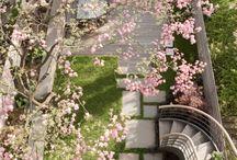 Outdoor Ideas/Garden / by Sarai Ruke