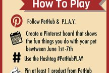 #PLAYwithPetHUb / It's National Pet Appreciation Week! Create a board that shows the fun things you do with your pets!  / by PetHub gets lost pets home faster.