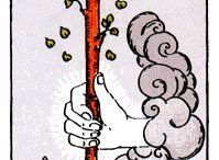 Tarot Rider Waite Minor arcana wands / tarot