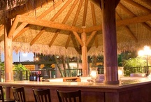 Palapa Bar & Lounge  / Great Cocktails, Margaritas, Tropical Blends and Hawaiian-style Appetizers in The Hotel Menage.  / by Casa Resorts Inc.
