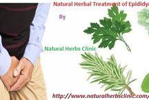 Epididymitis Herbal Treatment