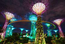Summer vacation / Singapore and Kuala Lumpur trip
