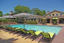 Elk Grove apartments for rent / The best apartments to rent in Elk Grove, CA!