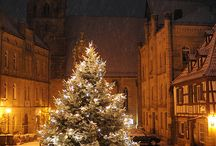 Christmas Trees around the World / by Linda Noel