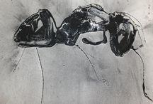 François Chevalier / Détenteur d'un baccalauréat en arts visuels de l'Université Laval, François Chevalier vit et travaille à Québec. Dessinateur, graveur, peintre, sa démarche privilégie depuis maintenant une dizaine d'années la réalisation de monotypes et la représentation des insectes.