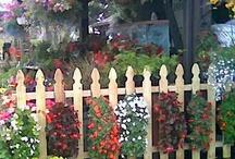 Gardening / by Gone-ta-pott.com