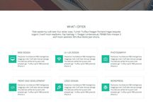 Premium Adobe Muse Templates / The best premium AdobeMuse Templates, gathered on this board for you. / by Pixelosaur