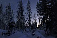 Inverno aw