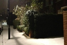 Snowy NW6 / Repository of West Hampstead & Kilburn snow photos