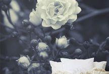 style: english garden / by Julia Harte