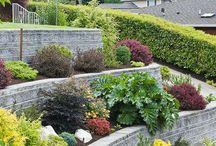 jardin en terrazas