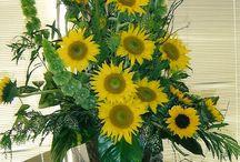 Cia de Arte Floral - Festas / Decorações de festas