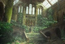 Abandoned but Lovely