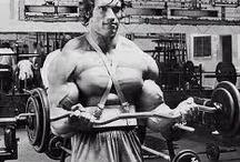 Arnold Schwarzenegger / Workout