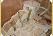 Hamster/gerbil