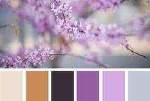 Colors / Color combinations