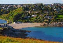 Wild Eyedeer - Roseladen Farmhouse / A beautiful farmhouse set in an area of outstanding natural beauty close to 3 stunning Cornish beaches in South West Cornwall