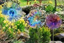 Want in my garden
