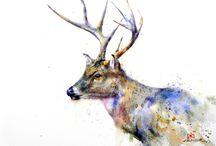 Sulu boya geyik