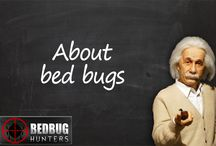 About bed bugs / Tips and advice on bed bug treatments, control and prevention, bed bug news from around the globe