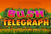 Bush Telegraph / Addentrati nella giungla e gioca con i protagonisti di Bush Telegraph: lemuri, cinghialetti e uccelli esotici terranno il ritmo delle tue vincite a suon di bonghi. Con simboli jolly e scatter, partite bonus Giocate gratuite (10 free spin) e Bongo (grazie alla quale puoi vincere fino a 2.500 monete), le occasioni per festeggiare non mancheranno.