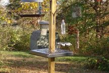Bird Feeders and Bird Baths