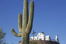 ΤΑΞΙΔΙΑ: Ι.Μ. Μεγάλου Αντωνίου, Αριζόνα, ΗΠΑ