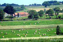 Krajobraz z okolic Reszla / www.jaceklitwin.com