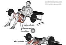 bodybuilding bacak