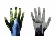 Día de la educación  ambiental - Day of environmental education