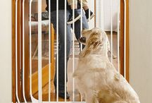 Product  Selection Help /  Read about your options when selecting dog products such as dog gates, raised feeders and dog houses.