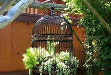 vogel kooi met plantje