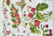 various berries(różne jagody)