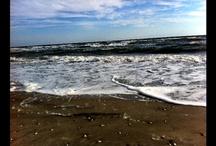 Atlantic City Beaches / by Atlantic City Strip Online