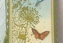 Cards (nature)