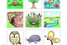 Science - Animals Habitat