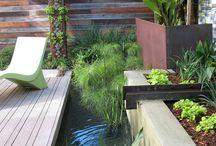 Water in your garden