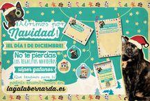 Navidad con Bernarda / Cositas Navideñas para estas Fiestas