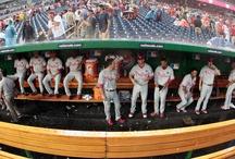 Baseball / by Holly Stoffel