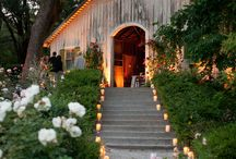 Wedding inspiration for Coco Lily Events