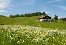 Wandern in Grassau und Rottau im Chiemgau / Grassau und Rottau sind umgeben von einer einzigartigen Landschaft, die einfach erkundet werden muss. Am besten könnt Ihr das zu Fuß über die vielen gut angelegten Wanderwege.