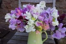 Tabletop floral decorations / Flowers for tabletops at weddings and events