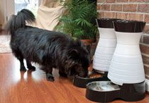 Food & Water Stations / Feeders make it easy for you to feed your pet the right amount, right on time. Automatic feeders deliver each meal at the same time every day. Gravity feeders are easy to refill and keep your pet's food bowl always full. Interactive feeders help your pet stay active and slow down to eat.