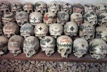 Rock N Skull CulT