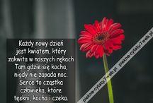 Piękne cytaty