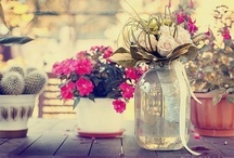 Pretty Flowers / by Diane Gallardo-Cannella