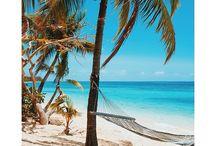 Fiji - Plantation Island Resort / Plantation Island Resort Fiji