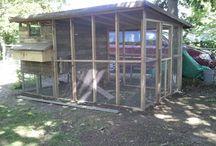 Ncera chicken coop